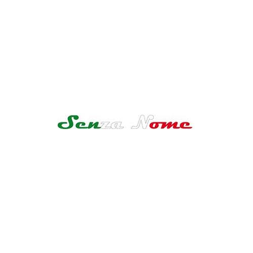 senza-nome-logo